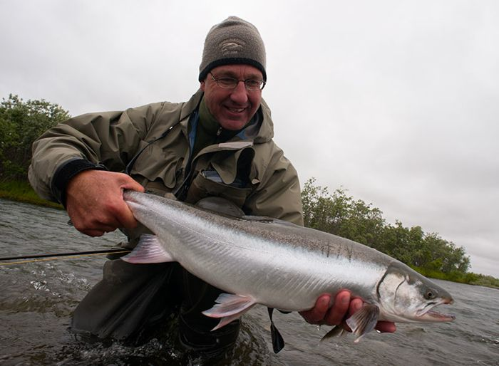 King Salmon Reel Action Alaska